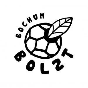 Bochum Bolzt